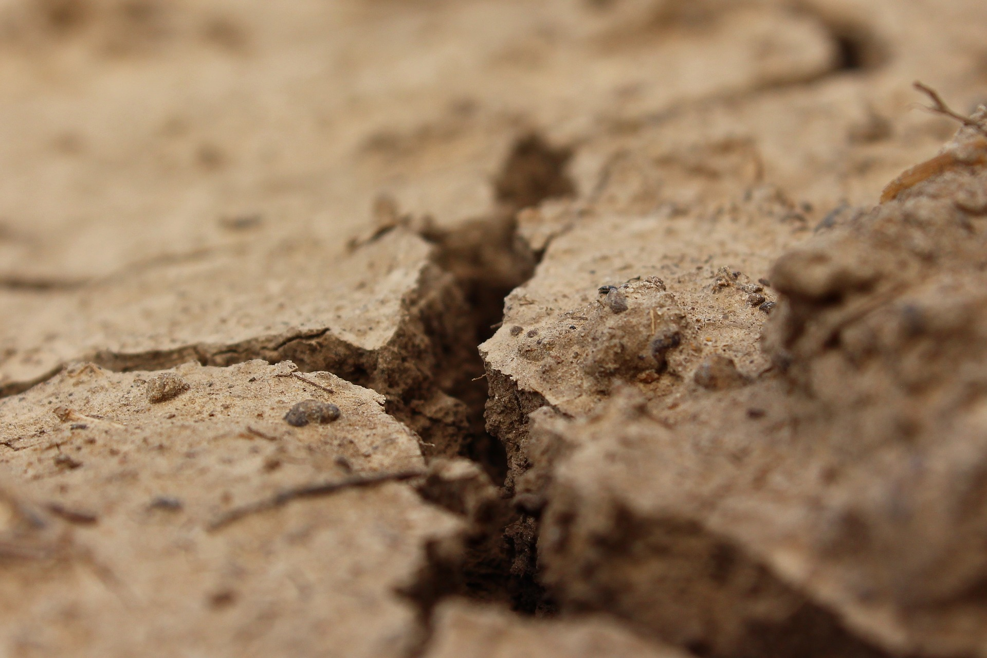 Nawalne deszcze a susza. Czy Polsce w dalszym ciągu zagraża susza?